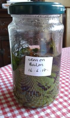 Lemon Balm remedy